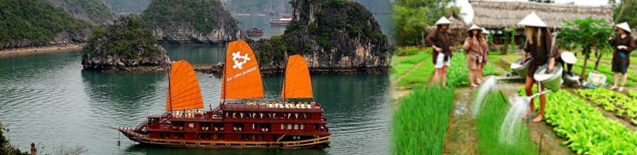 Vietnam con Sapa