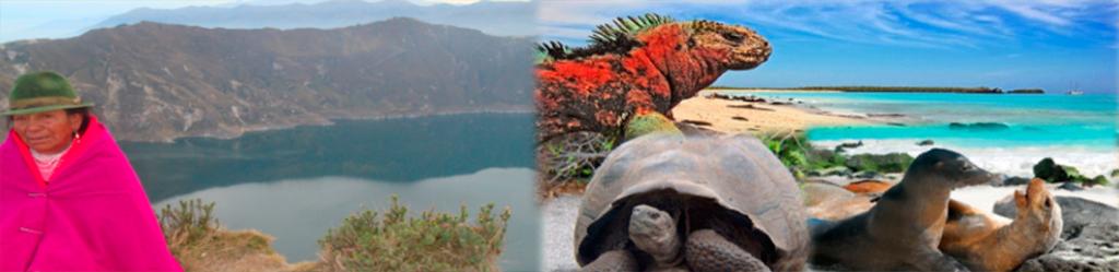 Andes ecuatorianos y galápagos